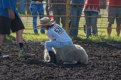 2016 rodeo friday mutton busting-2813 - Copy