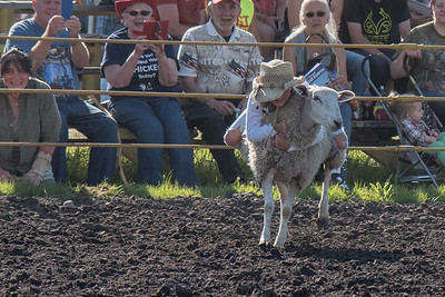 2016 rodeo friday mutton busting-2808 - Copy