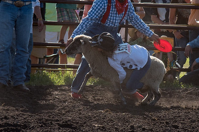 2016 rodeo friday mutton busting-2822 - Copy
