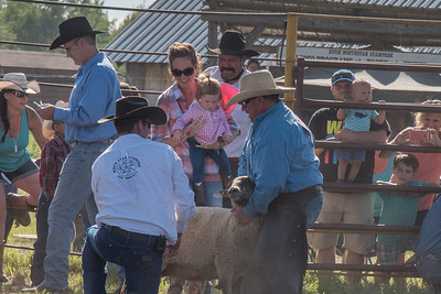 2016 rodeo friday mutton busting-2784 - Copy