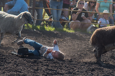 2016 rodeo friday mutton busting-2829 - Copy