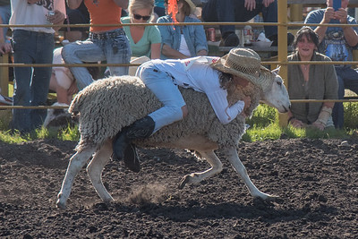 2016 rodeo friday mutton busting-2803 - Copy