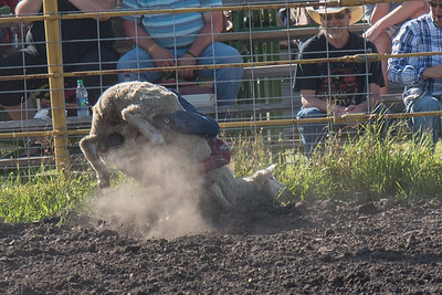 2016 rodeo friday mutton busting-2779