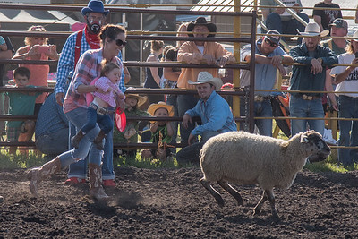 2016 rodeo friday mutton busting-2787 - Copy