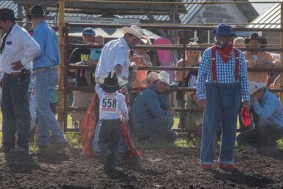 2016 rodeo friday mutton busting-2798 - Copy