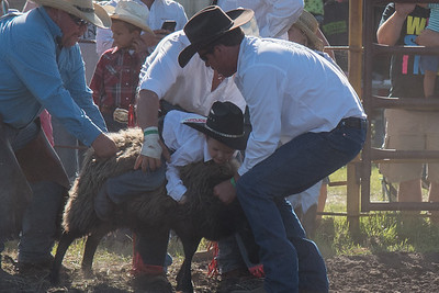 2016 rodeo friday mutton busting-2792 - Copy