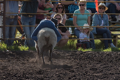 2016 rodeo friday mutton busting-2821 - Copy