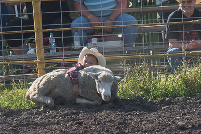 2016 rodeo friday mutton busting-2781