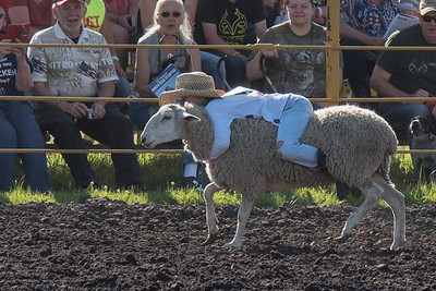 2016 rodeo friday mutton busting-2807 - Copy