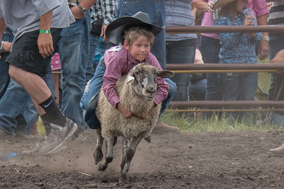 2016 rodeo saturday mutton busting-3902