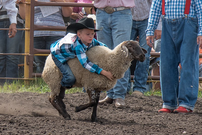 2016 rodeo saturday mutton busting-3871