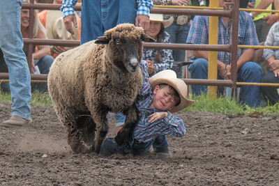 2016 rodeo saturday mutton busting-3915