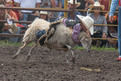 2016 rodeo saturday mutton busting-3881