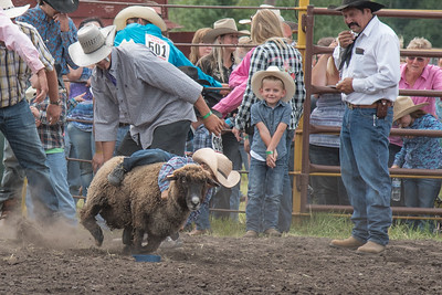 2016 rodeo saturday mutton busting-3911