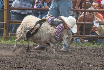 2016 rodeo saturday mutton busting-3880