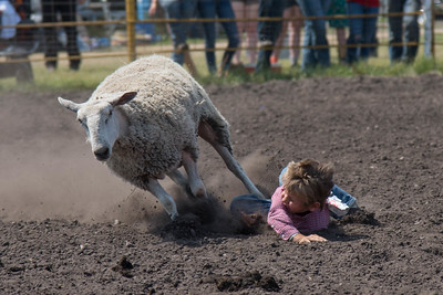 2016 rodeo sunday mutton busting-5000