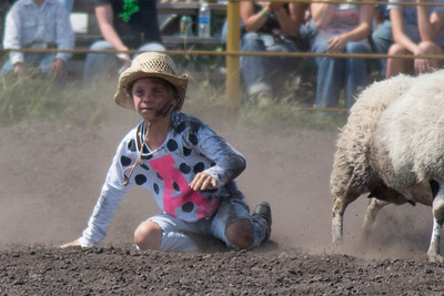 2016 rodeo sunday mutton busting-5028