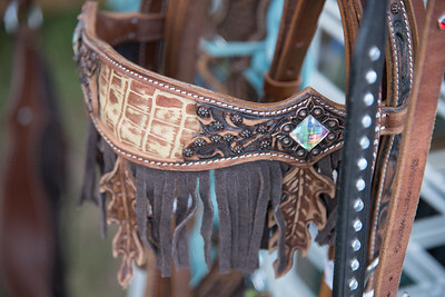 2016 rodeo friday color-2491