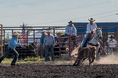 2016 rodeo friday roping-2916