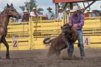 2016 rodeo saturday roping-3844