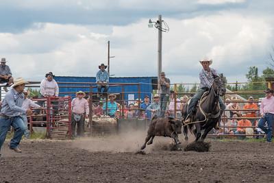 2016 rodeo saturday roping-3855