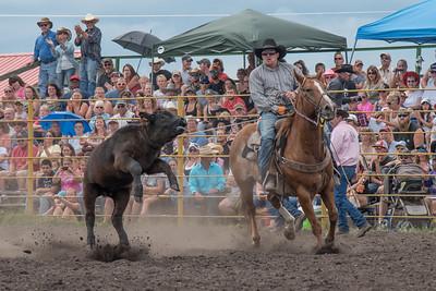 2016 rodeo saturday roping-3834