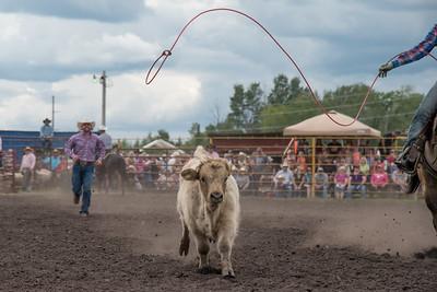 2016 rodeo saturday roping-3852