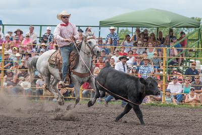 2016 rodeo saturday roping-3823