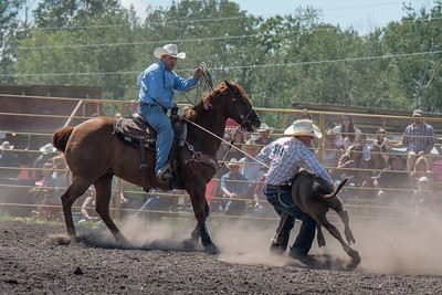 2016 rodeo sunday roping-4962