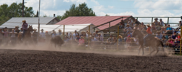 2016 rodeo sunday team roping-5241
