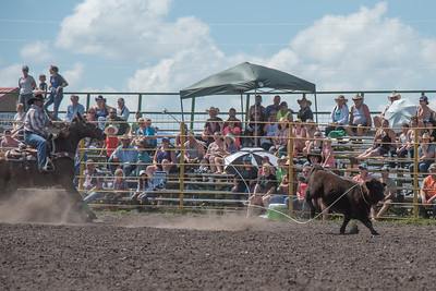 2016 rodeo sunday roping-4954