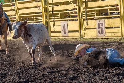 2016 rodeo friday steer wrestling-3133