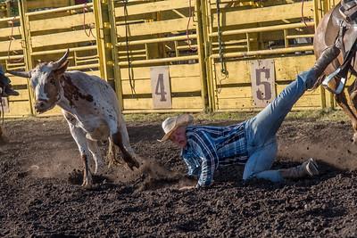 2016 rodeo friday steer wrestling-3132
