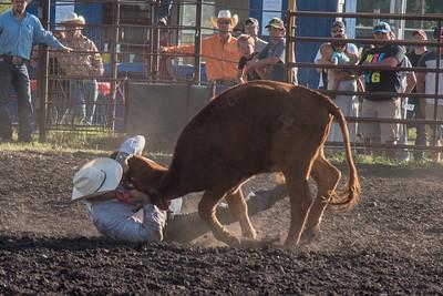 2016 rodeo friday steer wrestling-3152