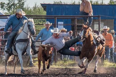 2016 rodeo friday steer wrestling-3136