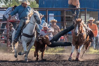 2016 rodeo friday steer wrestling-3137