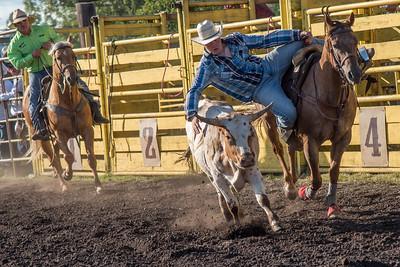 2016 rodeo friday steer wrestling-3127