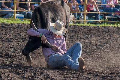 2016 rodeo friday steer wrestling-3119