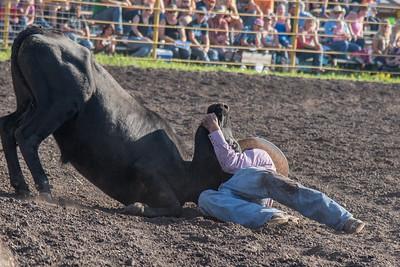 2016 rodeo friday steer wrestling-3124