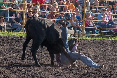 2016 rodeo friday steer wrestling-3114