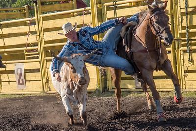 2016 rodeo friday steer wrestling-3128