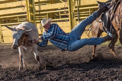 2016 rodeo friday steer wrestling-3131