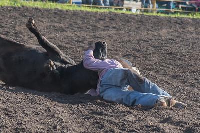 2016 rodeo friday steer wrestling-3125