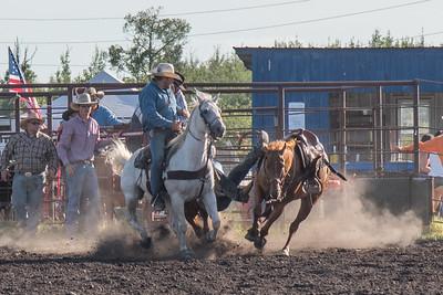 2016 rodeo friday steer wrestling-3073