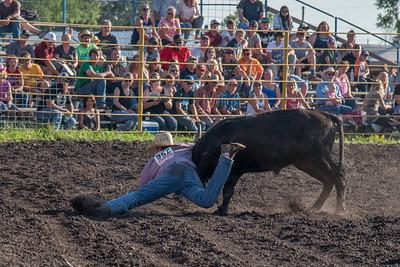 2016 rodeo friday steer wrestling-3107