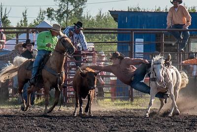 2016 rodeo friday steer wrestling-3091