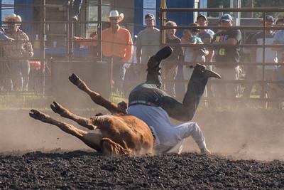 2016 rodeo friday steer wrestling-3148