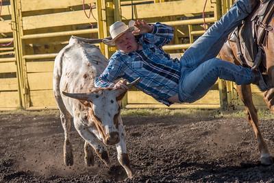 2016 rodeo friday steer wrestling-3130