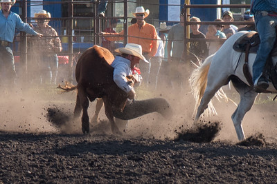 2016 rodeo friday steer wrestling-3145
