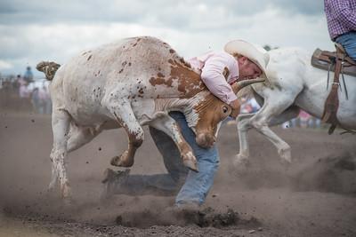 2016 rodeo saturday steer wrestling-4097
